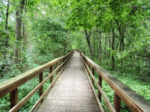hiking is one of the best things to do in westchester county, ny