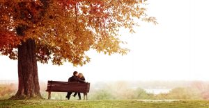 a couple sitting on a bench under a beech tree, enjoying romantic weekend getaways in Connecticut