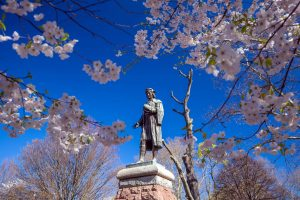 new haven can a destination for romantic day trips in ct. wooster square in new haven is beautiful in the spring